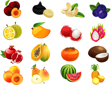 Various collection of fruits in cartoon illustration for kids educational purposes. Standard-Bild - 97694732