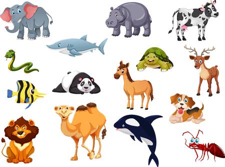 Animals Set1 Vector 矢量图像