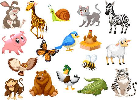 Animals Set2 矢量图像