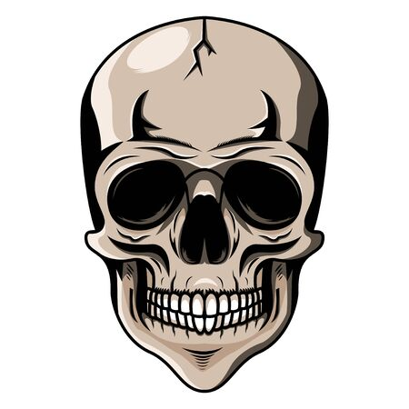 Skull head mascot