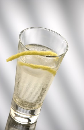 Gin and tonic served in a long drink glass, with two stripes of lemon. photo