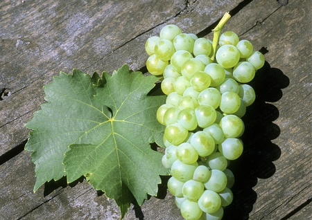 leaf and grapes of white wine on a wooden table photo
