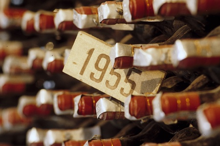 mustiness: Year 1955 wine in an old wine cellar. Stock Photo