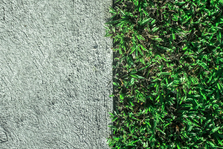 contradictory: Abstract photo of concrete and grass in on shot mean conflict