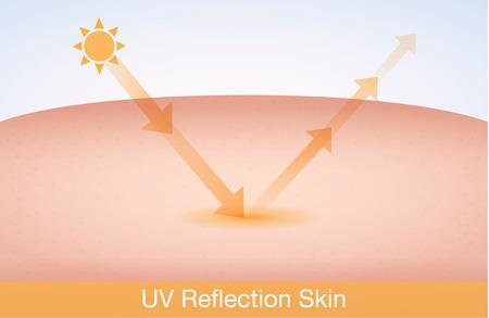 Pelle riflessione UV dopo protezione. Concetto di cura della pelle Archivio Fotografico - 41619056