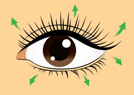 long eyelashes: Direction of brushing eyelash with mascara for long eyelash and beauty