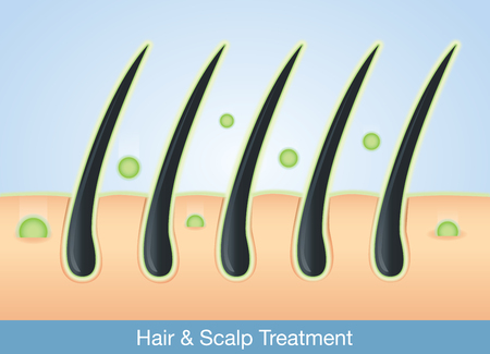 hair: Active ingredient treatment deep into hair and scalp.