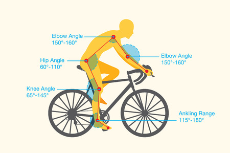 fitting: Guideline of good angle of body to increase cycling quality and safety. This is called bike fit or bike fitting