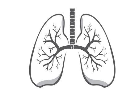 de color gris icono de los pulmones en el fondo aislado para el diseño del logotipo, icono de la web y otra de trabajo acerca de la salud médica y.
