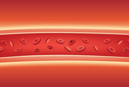 Im Inneren der Blutgefäße. Illustration über medizinische und Anatomie.
