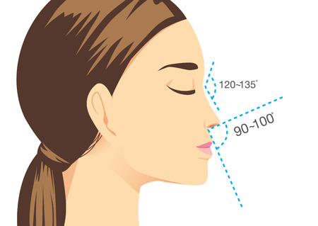 droopy: Ideal nose characteristics for woman. Illustration about beauty surgery.
