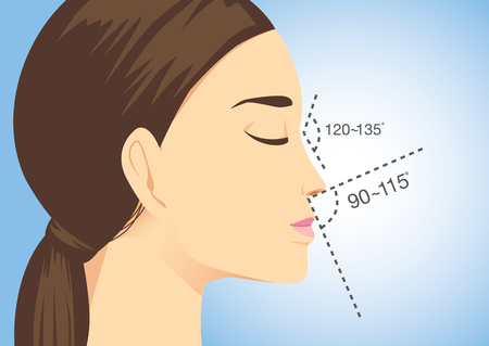 droopy: Ideal nose characteristics for woman on blue background. Illustration about beauty surgery. Illustration