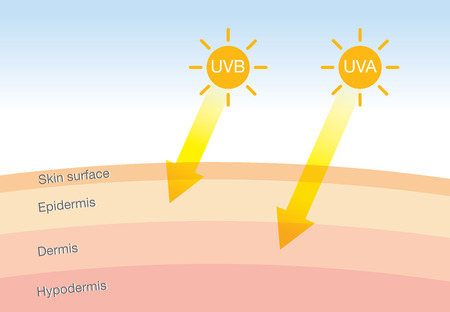 The difference of radiation 2 types in sunlight which is harmful to the skin.Illustration about UVA penetrate deep than UVB. 일러스트