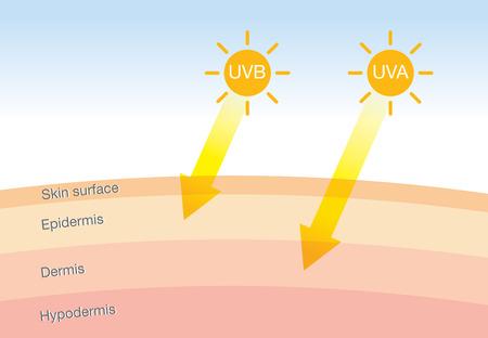 La diferencia de tipos de radiación 2 en la luz del sol que es perjudicial para la piel. Ilustración sobre UVA penetrar profundo de UVB. Ilustración de vector