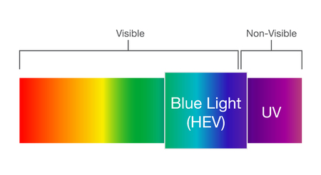 Blue light in visible spectrum. Illustration about Human vision.