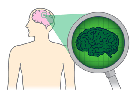 Looking inside of the human brain with Magnifying glass. Illustration about Medical scan in a head for health check. Ilustração