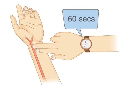 Vérification manuelle de votre fréquence cardiaque en plaçant deux doigts et une montre-bracelet. Illustration sur le diagnostic de santé. Vecteurs