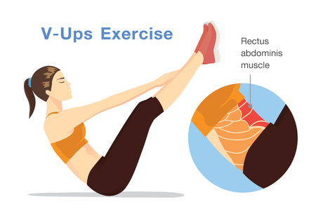 Healthy womam challenging the rectus abdominis muscle with V-Ups workout. Illustration about target of exercise.