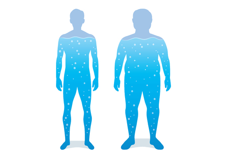 Water in difference body between shapely man and fat. Illustration about anatomy compare.