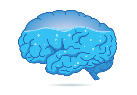 Water inside of the human brain isolated on white background. Illustration about composition of body.