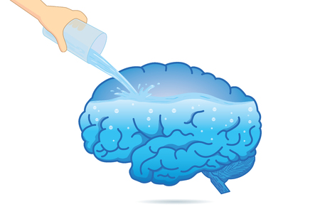 Filling the human brain with water from glass. Illustration about composition of body.