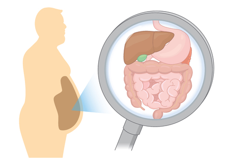 Zoom in internal organ about digestion of Fat man with Magnifying glass. Illustration about health care and medical.