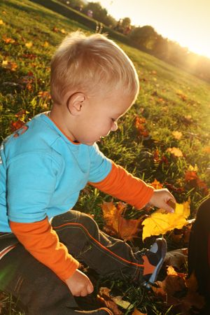 Little boy playing with yellow autumn leaves in the park photo