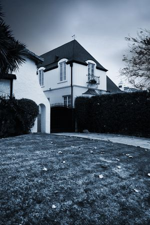 duotone: Spooky residential house with big lawn in front. Duotone image.