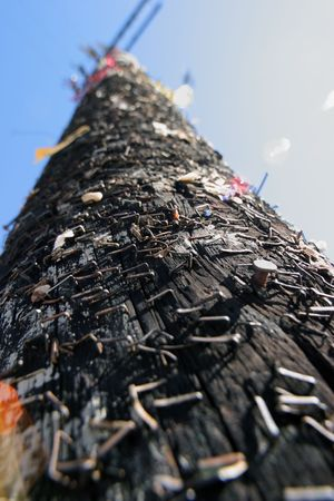 Stapled post, wide angle close-up. Stock Photo - 2483610