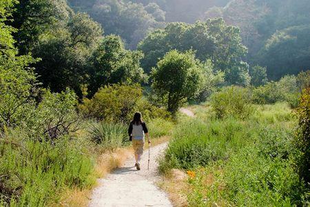 Beautiful hiking scene
