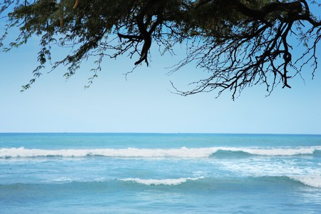 Peaceful ocean view from tropical island Stock Photo - 4238160
