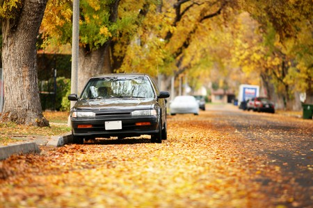 parking car: Autumn street covered with yellow leaves. Shallow DOF, focus on car. Stock Photo