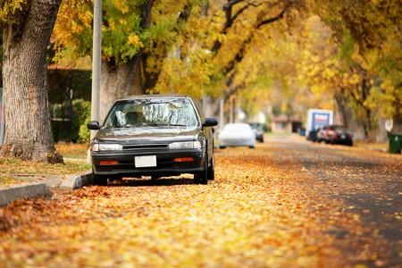 parked: Najaar straat bedekt met gele bladeren. Ondiepe DOF, focus op de auto. Stockfoto