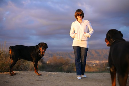Beautiful young woman outdoors walking with two dogs in park  photo