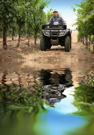Farmer in vineyard driving small tractor or all terrain vehicle. Stock Photo - 5947160