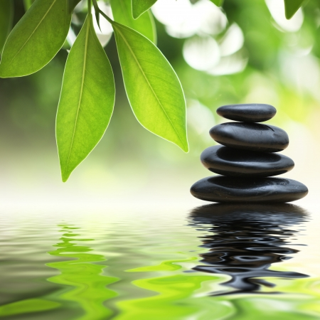 Grean leaves over zen stones pyramid on water surface photo