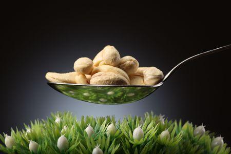緑の芝生の上のカシュー ナッツのスプーン