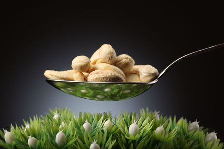 Spoon full of cashews over green grass