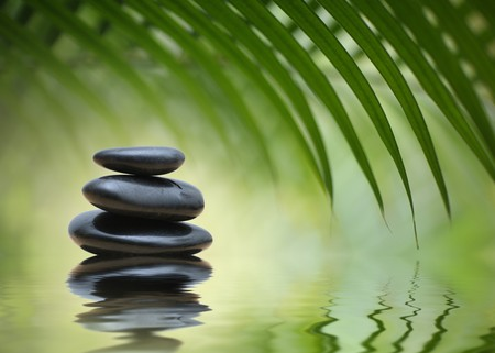 Grean bamboo leaves over zen stones pyramid reflecting in water surface Stock Photo - 7138897