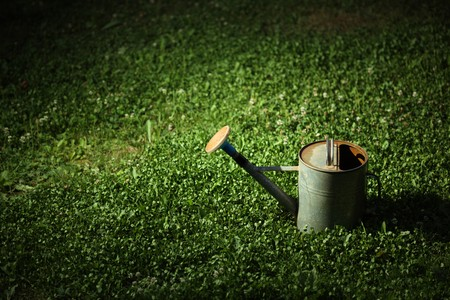 Old metal watering can on green grass at night in the spot of light. photo