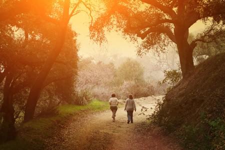 Twee vrouwen lopen buiten in het schilderachtige park onder grote eikenbomen bij zonsondergang. Stockfoto