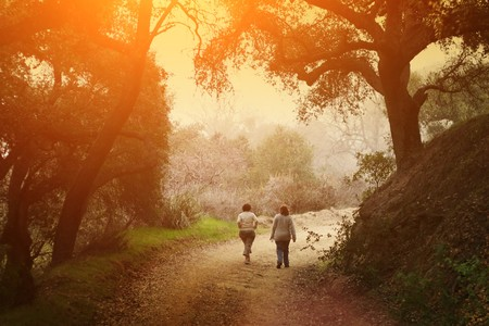 Two women walking outdoor in scenic park under big oak trees at sunset. photo