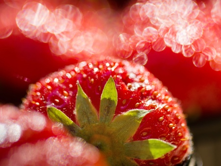 Red strawberries. Macro closeup, shallow DOF. Zdjęcie Seryjne