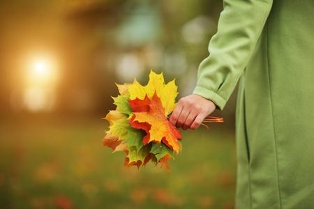 Vrouwelijke hand met kleurrijke boeket van de herfst bladeren. Close-up.
