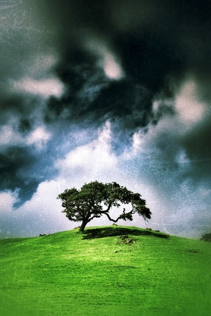 storm clouds: Tree on green hill over vintage grunge background texture. Stock Photo