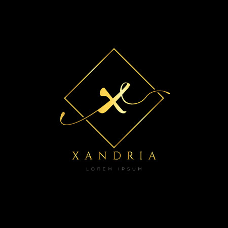 Simple Elegance Initial Letter X Logo Type Sign Symbol Icon