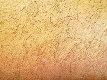 Brown hairy human skin texture