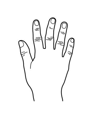 Number 5 or Five Hand Sign, Line Art Style Illustration