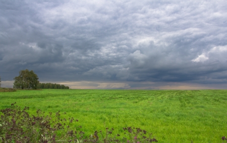Russian countryside before a thunder-storm Stock Photo - 14617147