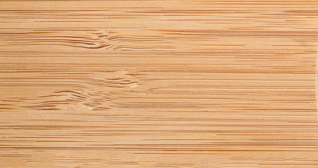 Rough texture of the tree, studio shot, top angle, horizontal